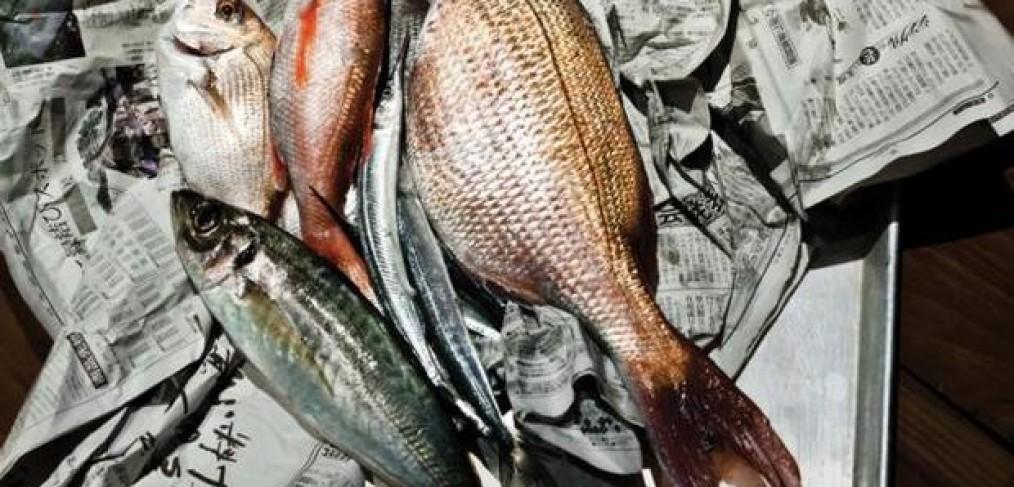 Sushi1-1014×487